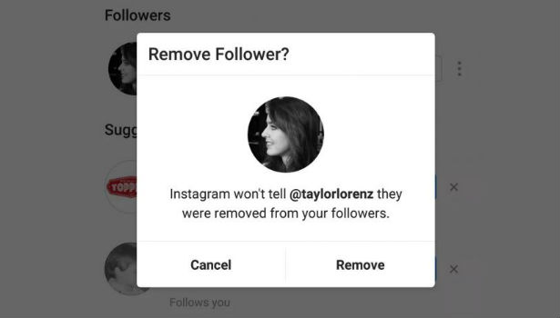 Insta Follower Remove