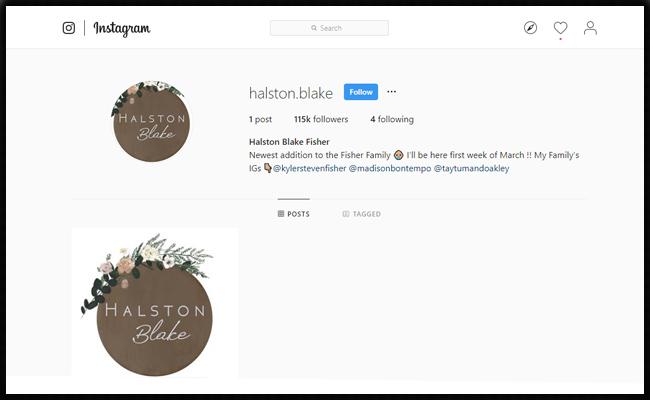 Halston-Insta